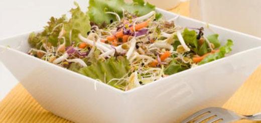 insalata-di-lusia-igp-con-germogli-di-lenticchia
